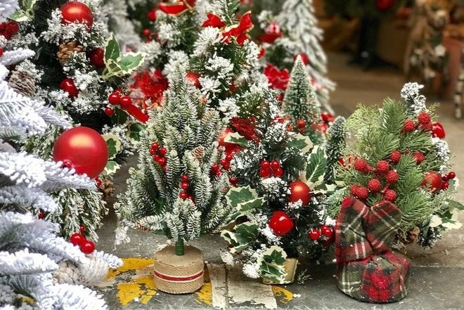 Hà Nội xuất hiện nhiều cây thông siêu to khổng lồ đón Noel 2019 - Ảnh 5.