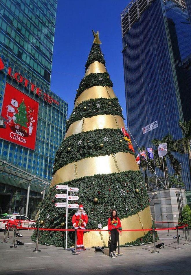 Hà Nội xuất hiện nhiều cây thông siêu to khổng lồ đón Noel 2019 - Ảnh 8.