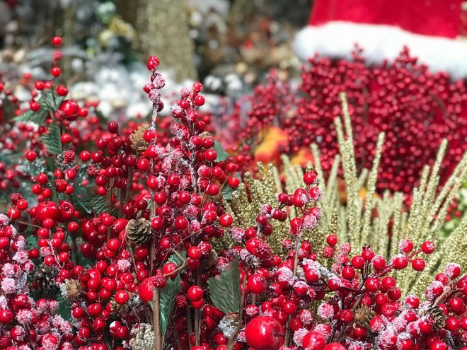 Thị trường Giáng sinh vào cao điểm, tiểu thương Hàng Mã vừa ăn vừa bán hàng - Ảnh 6.