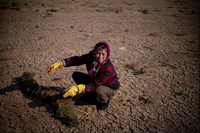 Hồ nước ngọt lớn nhất TQ chết khô: Ngư dân nổi giận nói thẳng đập Tam Hiệp là hung thủ - Ảnh 3.