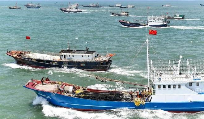 Trung Quốc tàn phá san hô Biển Đông bằng cuộc quân sự hóa - Ảnh 2.