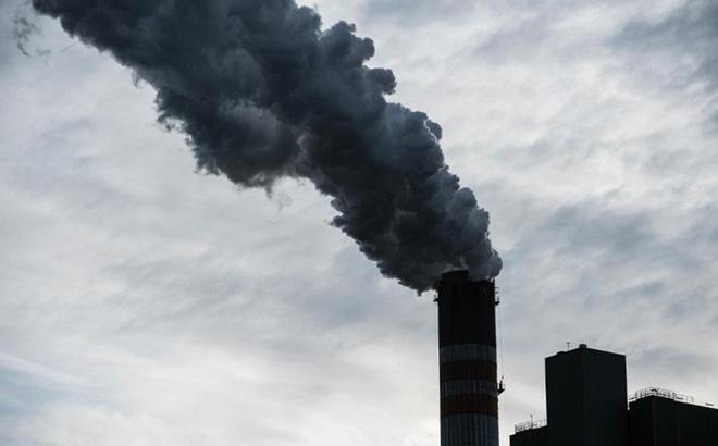 Nghiên cứu: Ô nhiễm không khí có thể khiến chúng ta kém thông minh đi