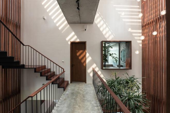 Độc đáo ngôi nhà ở Hà Nội nắng chiếu mọi nơi, trong nhà mà không khác gì ngoài trời - Ảnh 8.