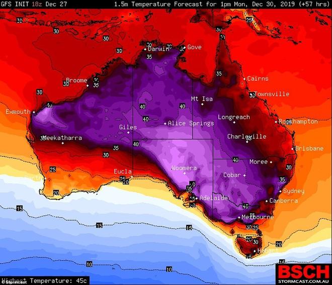 Nắng nóng, cháy rừng dữ dội ở Australia: Gấu koala khát khô, phải chạy đi xin người qua đường cho uống nước - Ảnh 2.