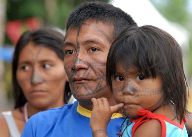 Thế giới sẽ đối mặt với hàng loạt thảm họa nếu rừng Amazon cháy rụi: 90% bệnh tật không có thuốc chữa, 50% loài sinh vật bị tiêu diệt - Ảnh 8.