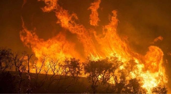 Toàn cảnh khí hậu thế giới 2019: Con số nhức nhối, thức tỉnh những người ngủ mê - Ảnh 6.
