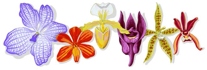 Giáo sư Rapee Sagarik: Cha đẻ của hoa lan Thái Lan và lời khuyên đắt giá về hạnh phúc - Ảnh 1.