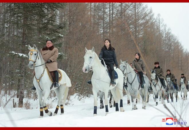 Chủ tịch Kim Jong Un và phu nhân cưỡi bạch mã đạp trên tuyết trắng, KCNA ca ngợi: Lưu lại dấu chân thiêng liêng - Ảnh 1.