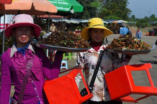24h qua ảnh: Các cô gái bán dạo côn trùng rán ở Campuchia - Ảnh 5.