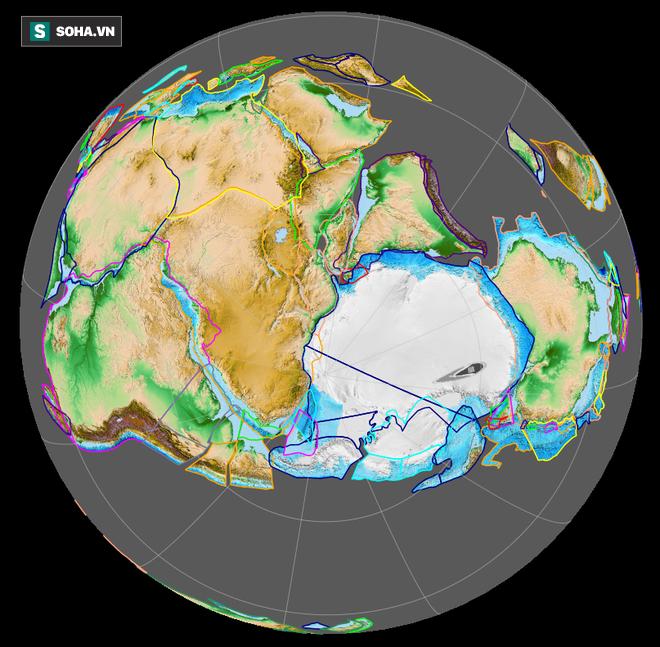 Kẻ gác đêm: Bí mật triệu năm của loài trăn khổng lồ, chỉ có duy nhất ở 1 nơi trên Trái Đất - Ảnh 3.