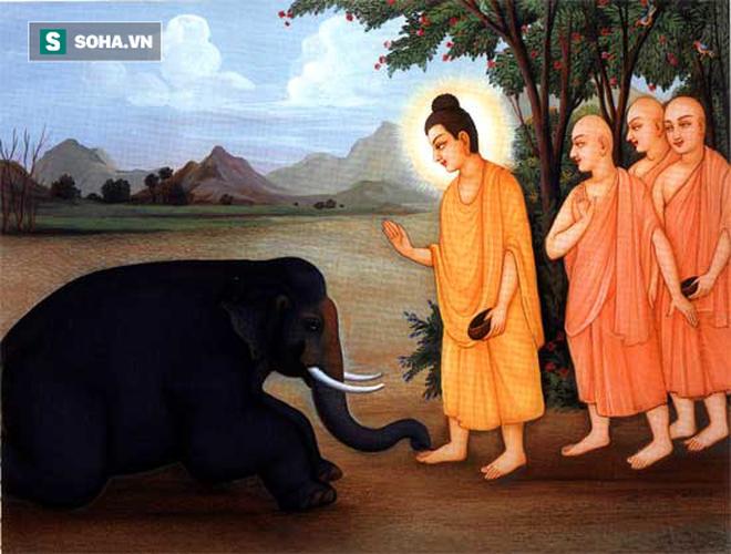 Bị họ hàng lấy hết của cải, người đàn ông làm 1 việc kỳ lạ nhưng được Đức Phật ủng hộ - Ảnh 1.