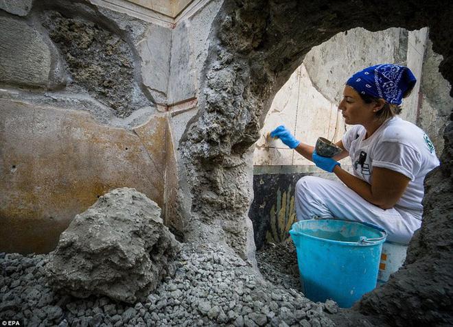 Bí ẩn 2.000 năm dưới tro núi lửa - Ảnh 3.