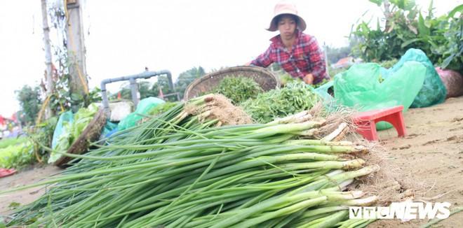 Độc đáo lễ hội Cầu Bông ở làng rau sạch lớn nhất miền Trung - Ảnh 4.