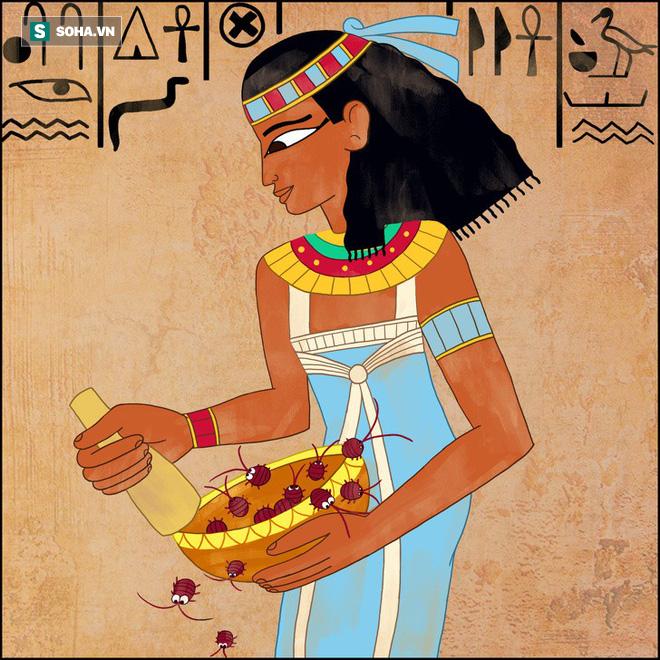 Những sự thật kỳ lạ có 1-0-2 thời Ai Cập cổ đại mà không nhiều người biết - Ảnh 1.