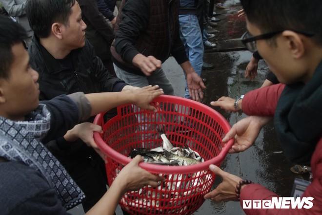 Ảnh: 15.000 người tham gia thả 10 tấn cá xuống sông Hồng trong lễ phóng sinh lớn nhất Hà Nội - Ảnh 9.
