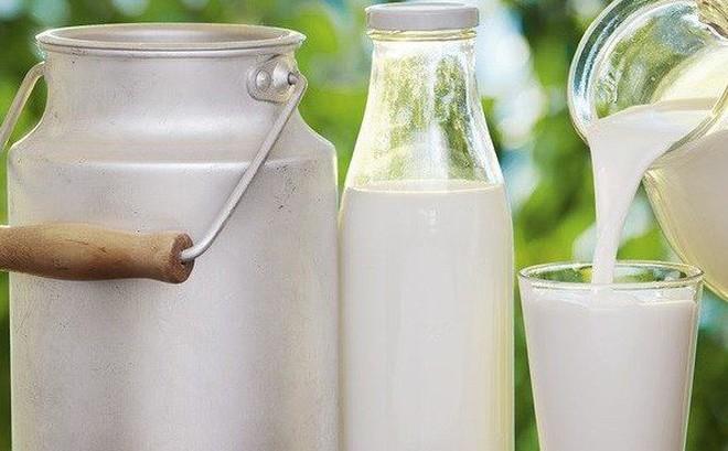 Sữa tách béo so với sữa nguyên chất: Loại nào thực sự tốt cho sức ...