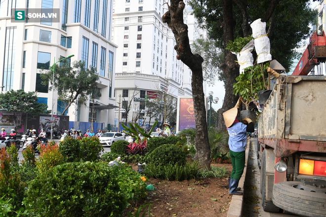 Đường phố Hà Nội trang hoàng chào đón hội nghị thượng đỉnh Mỹ - Triều - Ảnh 4.