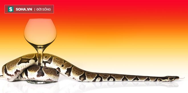 Con rắn trong ly rượu và câu chuyện về nỗi sợ hãi ai cũng nên đọc để biết cách vượt qua - Ảnh 1.