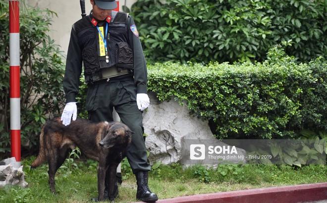 [Ảnh] 3 chú khuyển đặc biệt kiểm tra khách sạn Melia trước ngày Chủ tịch Kim Jong-Un đến Việt Nam
