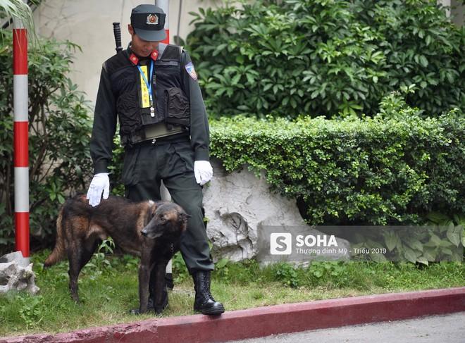 [Ảnh] 3 chú khuyển đặc biệt kiểm tra khách sạn Melia trước ngày Chủ tịch Kim Jong-Un đến Việt Nam - Ảnh 13.