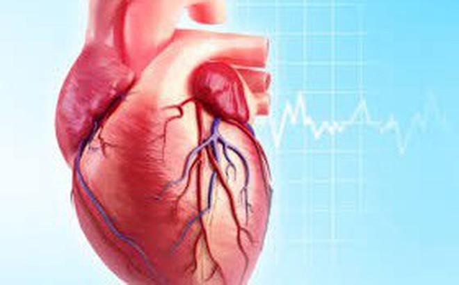 Mắc phải 1 trong 3 thói quen này, không sớm thì muộn sẽ có nguy cơ mắc bệnh tim mạch