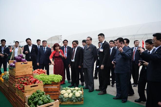 [ẢNH] Trợ lý kinh tế thân cận nhất của ông Kim Jong Un cười rạng rỡ khi đến thăm nhà máy Vinfast - Ảnh 11.