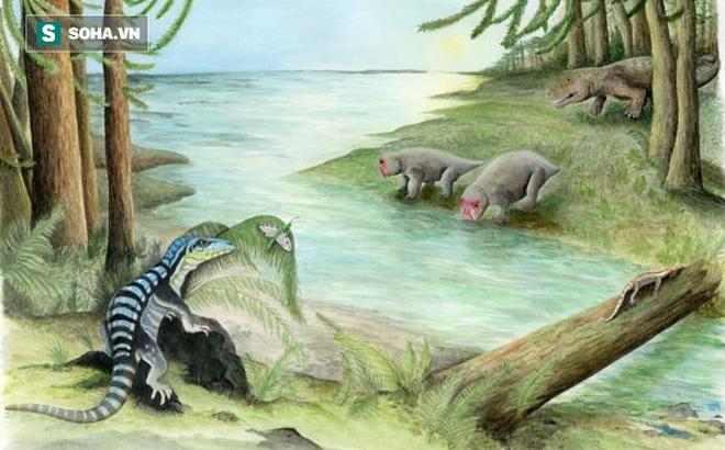 """Phát hiện mẫu hóa thạch """"Vua Nam Cực"""" dưới băng giá"""