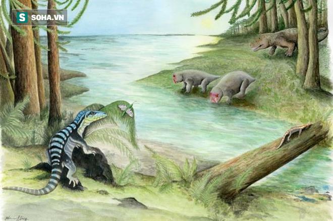"""Phát hiện mẫu hóa thạch """"Vua Nam Cực"""" dưới băng giá - Ảnh 1."""