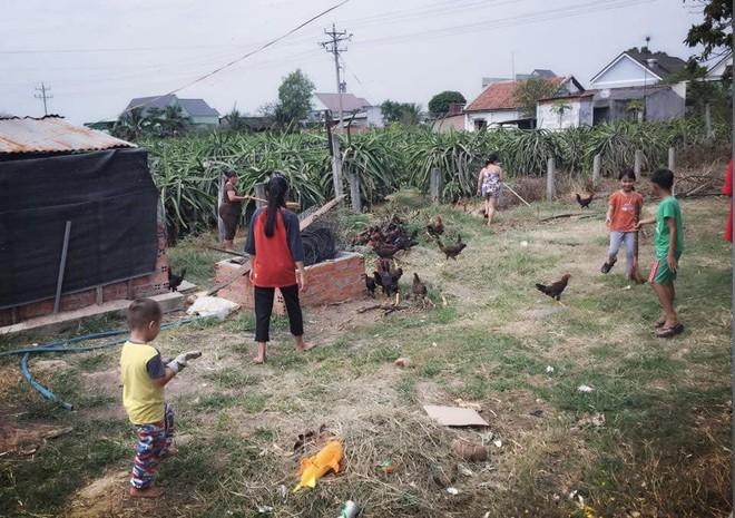 Chuyện hài hước cuối năm: Thấy cả nhà dọn dẹp stress quá, thanh niên 4 tuổi mở chuồng gà hơn 80 con cho mọi người sum vầy hơn - Ảnh 2.
