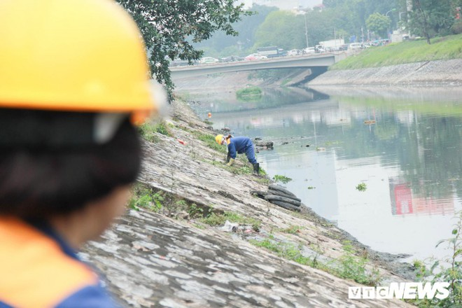 Sau 4 năm thả bè thủy trúc, nước sông Tô Lịch giờ ra sao? - Ảnh 10.