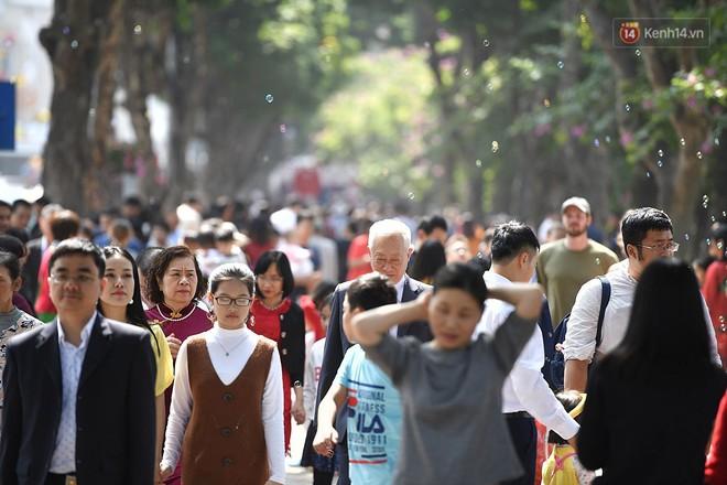 Dân mạng kêu trời vì Hà Nội mùa xuân nóng như mùa hè: mua áo len, áo nỉ đã đời thì cất trong tủ - Ảnh 10.