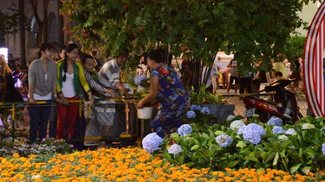 Dọn dẹp đường hoa Nguyễn Huệ, nhiều người vượt rào, tranh giành hoa - Ảnh 4.