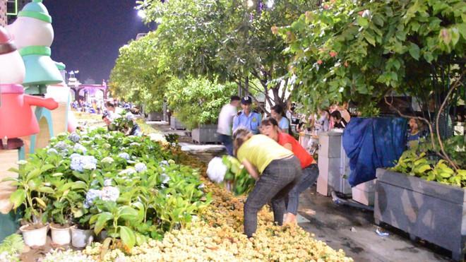 Dọn dẹp đường hoa Nguyễn Huệ, nhiều người vượt rào, tranh giành hoa - Ảnh 7.