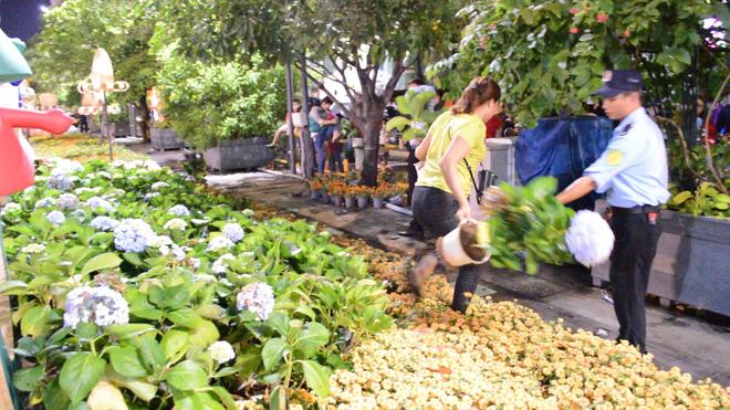 Dọn dẹp đường hoa Nguyễn Huệ, nhiều người vượt rào, tranh giành hoa - Ảnh 6.