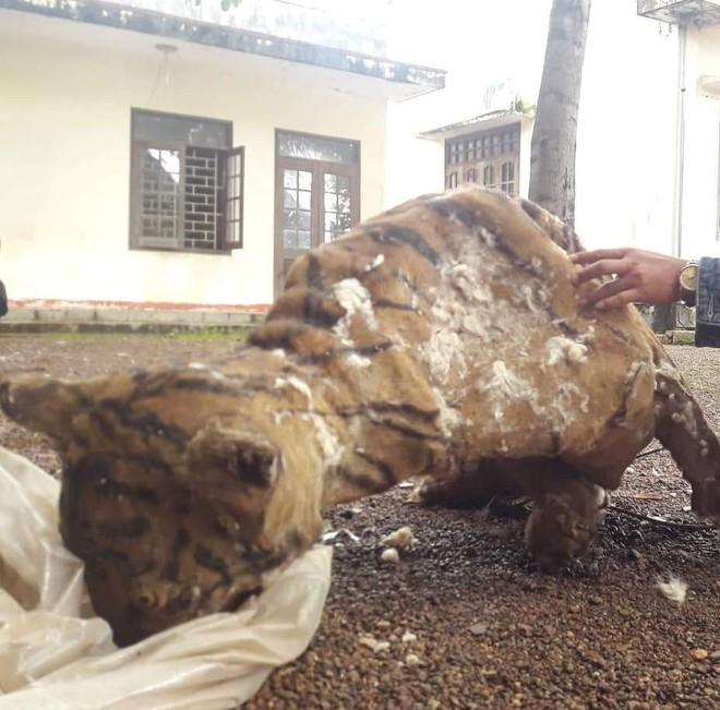 Chuyện thật như bịa ở Tây Nguyên: Lão nông cầm cuốc bổ chết hổ rừng đang quắp người phụ nữ - Ảnh 2.