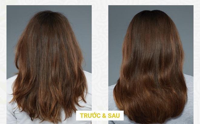 Công nghệ nâng tầm đưa 13 dược liệu cổ truyền hồi sinh tiếp tục hành trình nuôi dưỡng mái tóc hiện đại