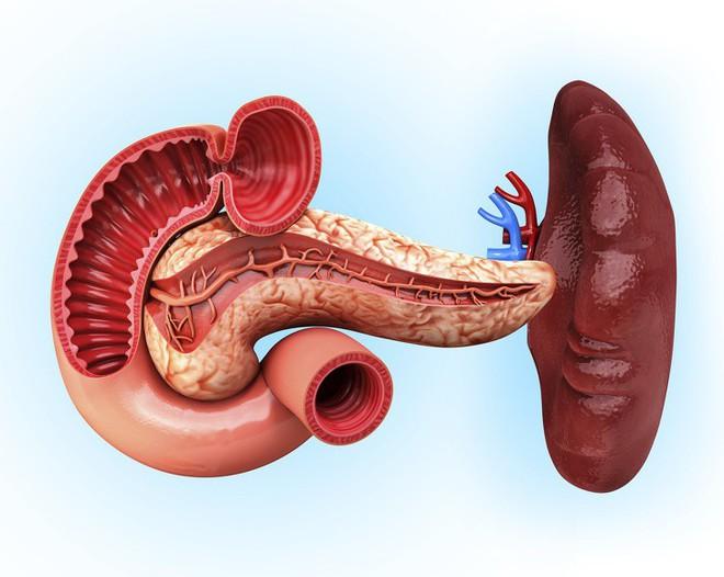 Ai quan tâm đến sức khoẻ tim, gan, phổi, thận cần phải biết điều này - Ảnh 10.