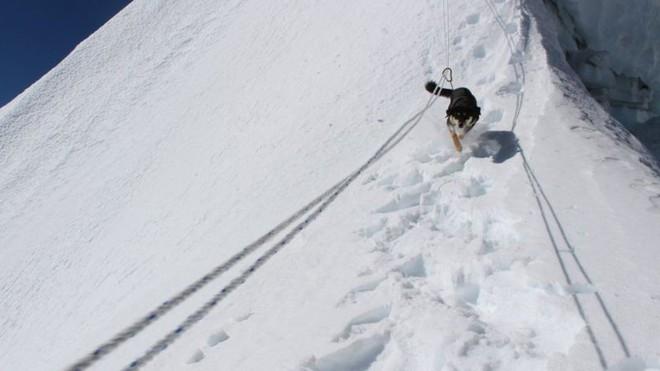 Lẽo đẽo theo sau đoàn leo núi, cô chó hoang lập kì tích khi lên tới đỉnh dãy Himalaya cao hơn 7000 mét - Ảnh 4.