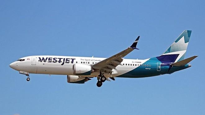 Hãng nào dừng, hãng nào vẫn bay Boeing 737 MAX 8? - Ảnh 5.