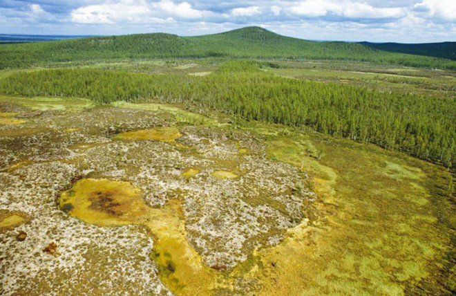 Bí ẩn thế kỷ về vụ nổ siêu khủng xoá sổ 80 triệu cây cối ở Siberia, Nga - Ảnh 4.