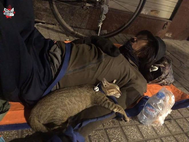 Chú mèo nhỏ nằm ngủ ngon lành trong vòng tay người đàn ông lang thang trên vỉa hè khiến nhiều người thương cảm - Ảnh 2.