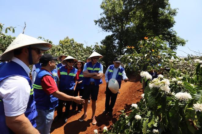 Golf thủ huyền thoại Greg Norman thăm vùng cà phê CADA tỉnh Đắk Lắk - Ảnh 4.