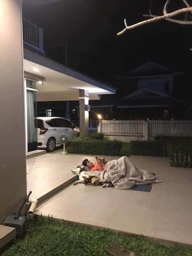Giữa đêm, chồng mang chăn ra ngủ cùng bồ giữa sân, vợ dở khóc dở cười khi biết lý do - Ảnh 1.