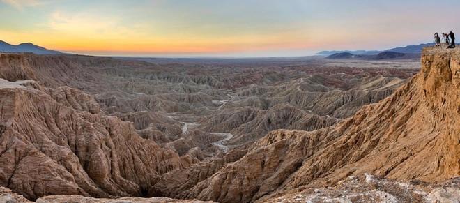 Choáng ngợp trước hiện tượng hoa siêu bung nở cực hiếm gặp, khiến cả sa mạc như sống dậy - Ảnh 1.
