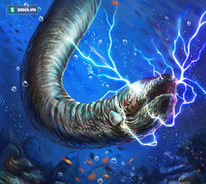 Giải mã cơ chế phóng điện của thủy quái Amazon, kẻ có thể dễ dàng giết chết cá sấu - Ảnh 1.