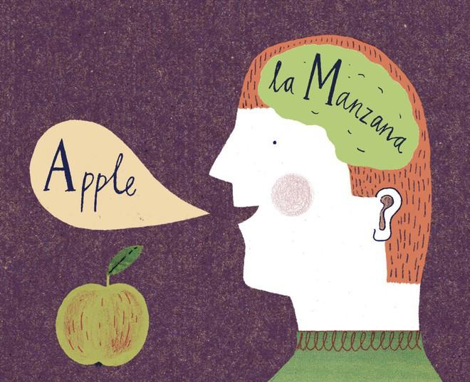 Giả thuyết: Liệu biết nhiều thứ tiếng có khiến bạn trở thành người đa nhân cách? - Ảnh 1.