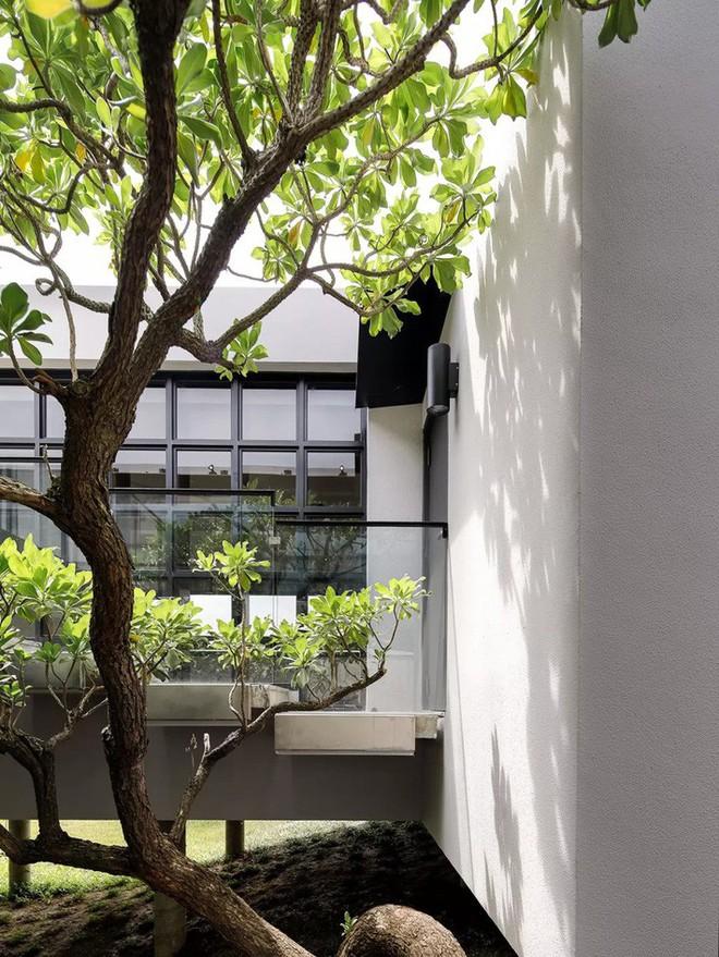 Ngôi nhà độc đáo không có mái giành huy chương vàng trong cuộc thi thiết kế nội thất - Ảnh 15.