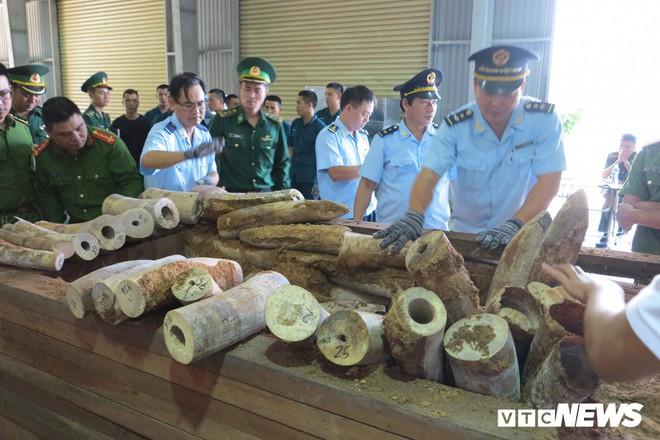 Bắt giữ hơn 9,1 tấn sừng nghi ngà voi ngụy trang tinh vi ở Đà Nẵng - Ảnh 2.