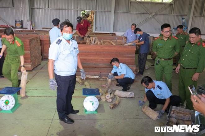Bắt giữ hơn 9,1 tấn sừng nghi ngà voi ngụy trang tinh vi ở Đà Nẵng - Ảnh 4.