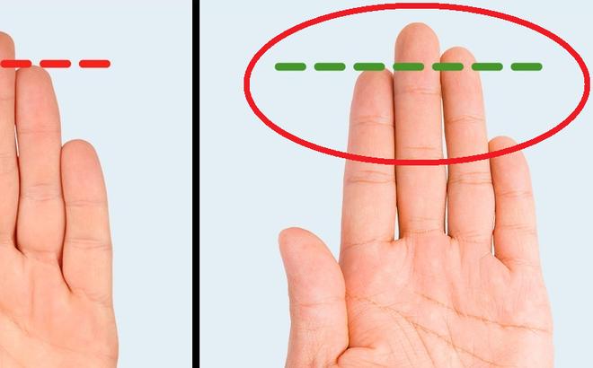 """Đặc quyền của đàn ông có ngón trỏ ngắn hơn ngón đeo nhẫn: Phụ nữ """"chết mê"""""""